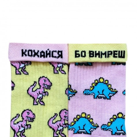 """Шкарпетки жовто-рожеві """"Динозаврики"""" Дед Носкарь"""