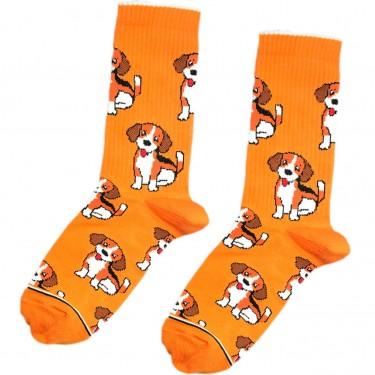 """Шкарпетки помаранчеві """"Бігль"""" Дід Носкар"""
