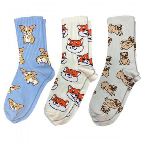 """Набір шкарпеток """"Песики"""" Sunny Focks"""