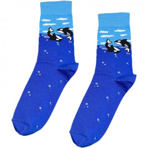 """Шкарпетки сині """"Косатки"""" Sunny Focks"""